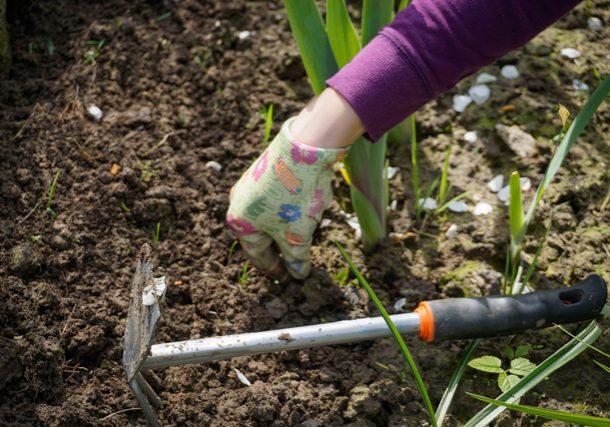 tuinieren ouders